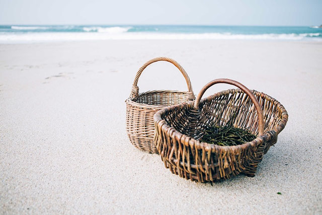 Fat Hen baskets on beach