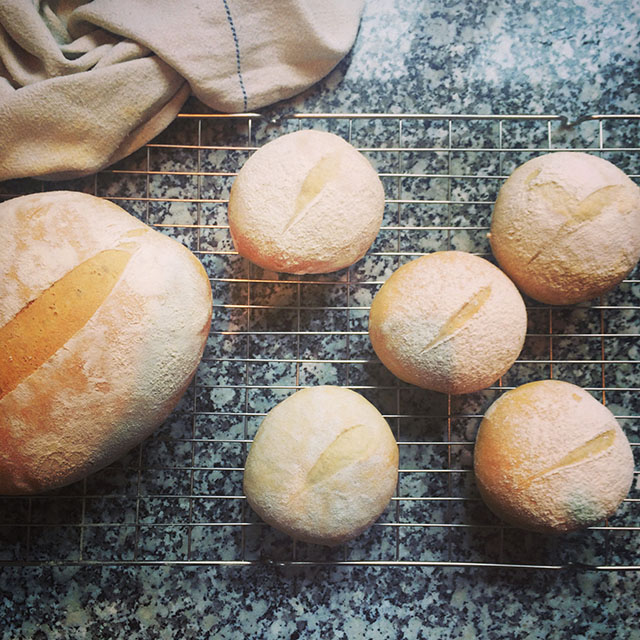 Simple white loaf and rolls